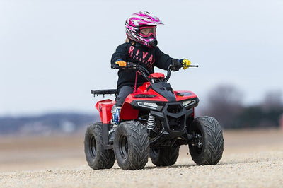 NEW YOUTH/KIDS UTILITY 110cc ATV - TAO TAO MUDHAWK 6 W/ REVERSE- CA Carb Approved