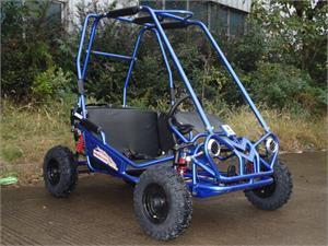 New Youth - TrailMaster MINI XRS+  Kids Go Kart - CA Carb Approved - Free Shipping