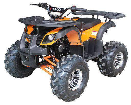 New Vitacci RIDER 10 DLX - 125cc Fully Automatic Youth ATV with Reverse