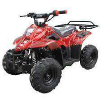 New Kids 110cc ATV - Coolster 3050C - ATV with Headlight & Rack - CA Carb Approved - Free Shipping atvs Wholesale ATV Red spider