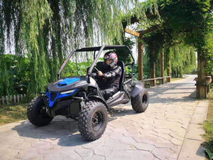 New 200cc - Trailmaster Cheetah 200 - Youth/Adult UTV