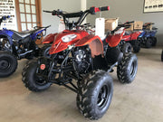 New Kids 110cc ATV - Coolster 3050B - Sport ATV - CA Carb Approved - Free Shipping atvs Wholesale ATV