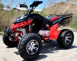 New 300cc - Trailmaster Challenger 300X - Deluxe Youth/Adult UTV