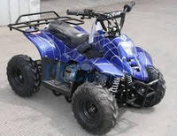 New Kids 110cc ATV - Coolster 3050C - ATV with Headlight & Rack - CA Carb Approved - Free Shipping atvs Wholesale ATV Blue Spider
