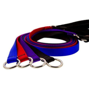 Lupine Lupine Basic Solids Slip Lead for Dogs