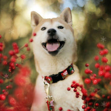 Load image into Gallery viewer, Lupine Lupine Christmas Cheer Dog Leash