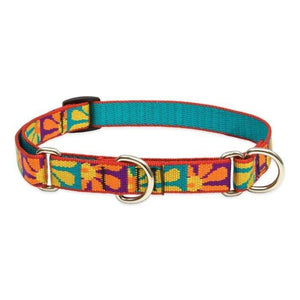 Lupine Lupine Crazy Daisy Martingale Dog Collar