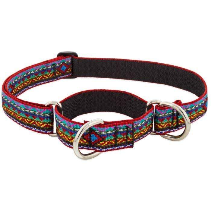 Lupine Lupine El Paso Martingale Dog Collar