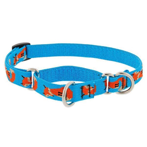 Lupine Lupine Foxy Paws Martingale Dog Collar