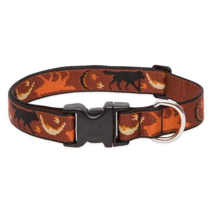 Lupine Lupine Shadow Hunter Dog Collar