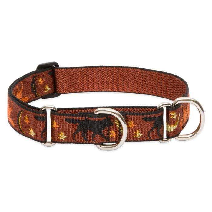 Lupine Lupine Shadow Hunter Martingale Dog Collar