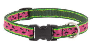 "Lupine Lupine Watermelon Dog Collar - 3/4"" Only"