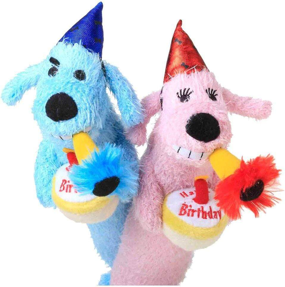 Multipet Multipet Loofa Birthday Dog Dog Toy - 12""