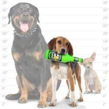 Load image into Gallery viewer, Silly Squeakers Silly Squeakers Beer Bottles - Stuffing Free Vinyl Dog Toy