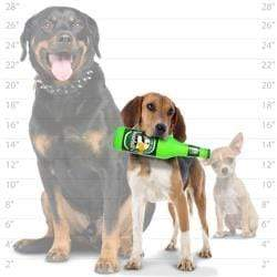 Silly Squeakers Silly Squeakers Beer Bottles - Stuffing Free Vinyl Dog Toy