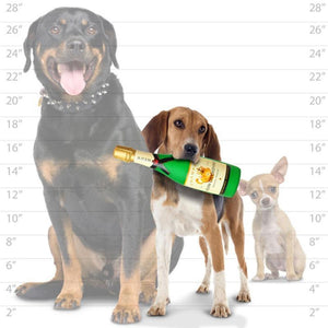 Silly Squeakers Silly Squeakers Wine Bottles Squeaky Vinyl Stuffing Free Dog Toy