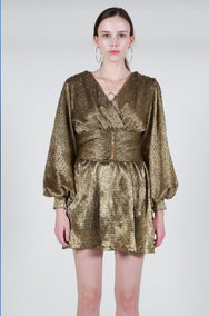 Ferrara Golden Mini Dress /  Premium Collection