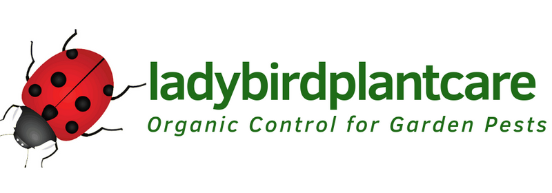 ladybirdplantcare.co.uk