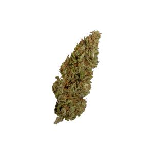 BondonHaze - 3g - Erboteca.it