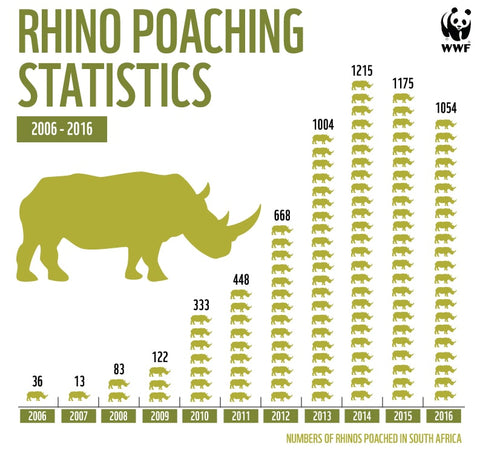 Rhino Poaching Statistics 2017 Infographic Wildlife Wardrobe About Us