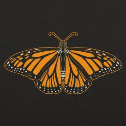 Animal-Vintage-Monarch-Butterfly-T-Shirt-Wildlife-Wardrobe