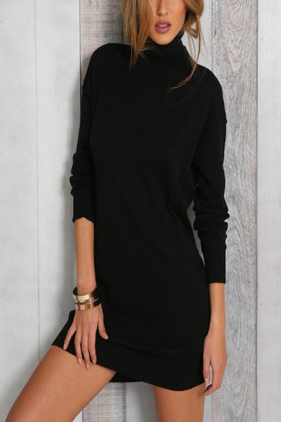 Cowl Neck  Plain  Long Sleeve Bodycon Dresses
