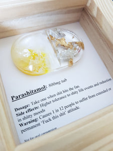 Parashit-amol treatment pill, novelty shit gift idea resin art