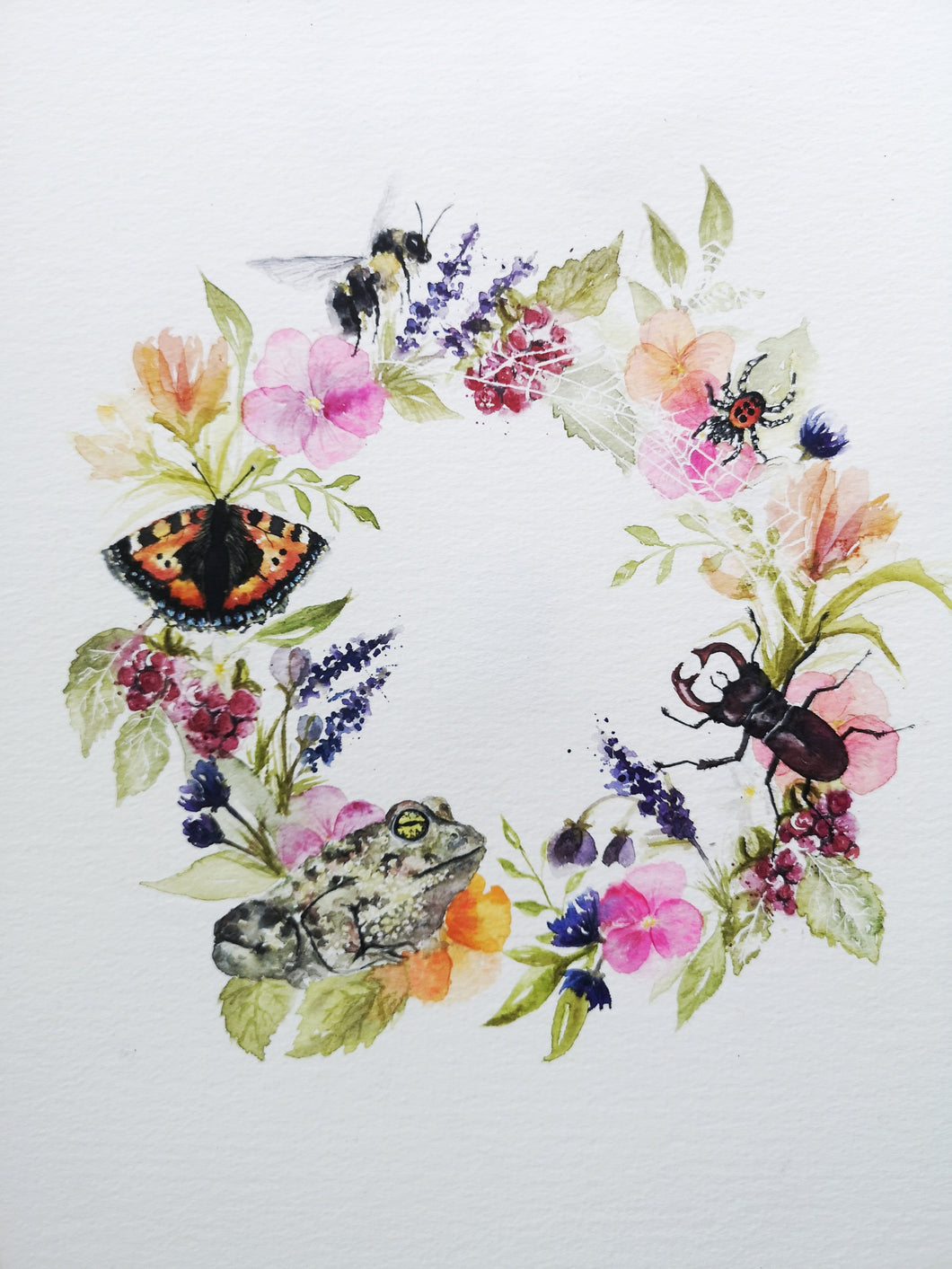 Insect Watercolour Accessories