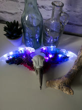 Crow skull light with wings