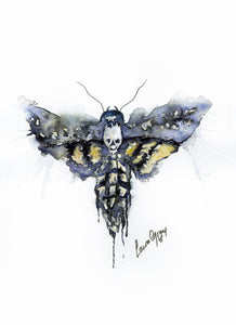 Watercolour Death Head Moth Accessories