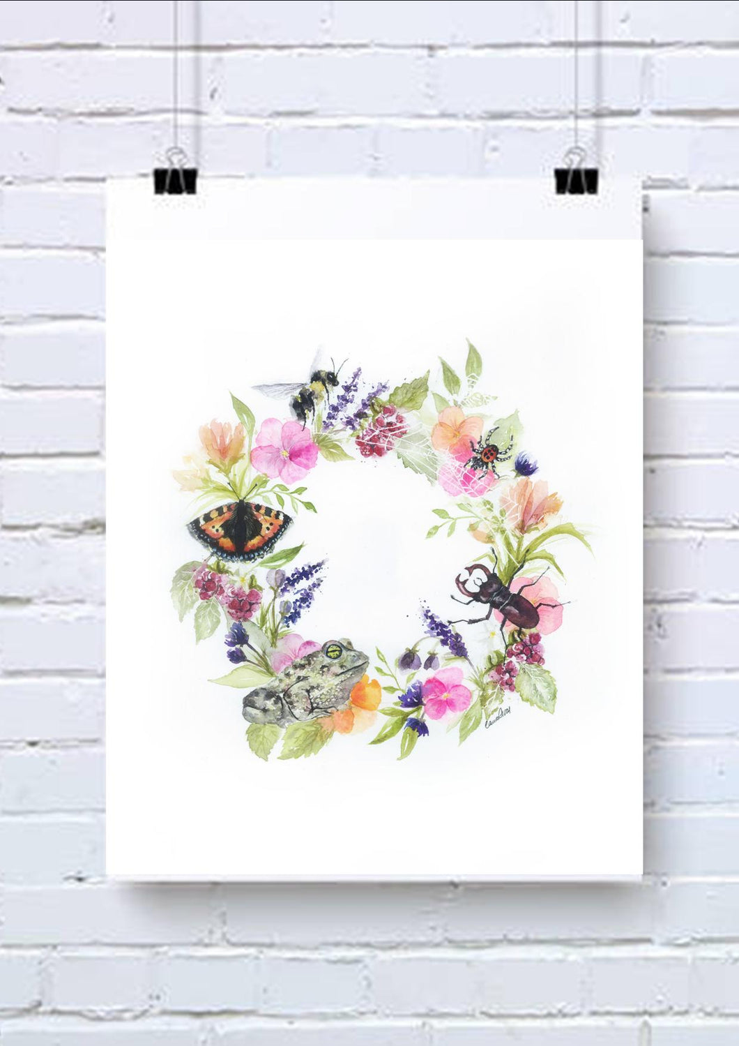 Insect Watercolour Wall Art