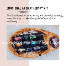 Load image into Gallery viewer, The Emotional Aromatherapy Minimalistic Graphics