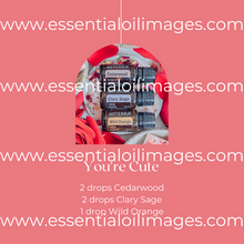 Load image into Gallery viewer, The Essential Oil Images Valentines Day Graphics Collection