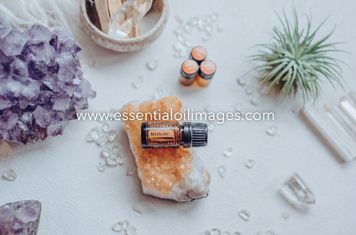 The Enlightenment Sample Emotional Aromatherapy Collection