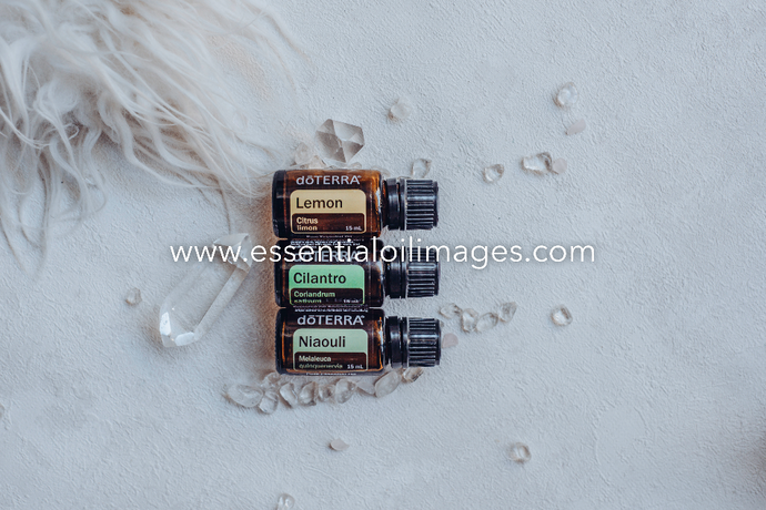 The Enlightenment Niaouli Blend Collection