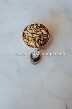 Load image into Gallery viewer, A Spotlight on Cardamom