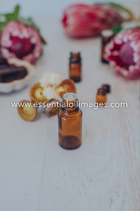 The Protea Unbranded Essential Oil Collection