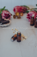 Load image into Gallery viewer, The Protea Unbranded Essential Oil Collection