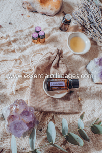 The Natural Essence Lavender Sampling Collection