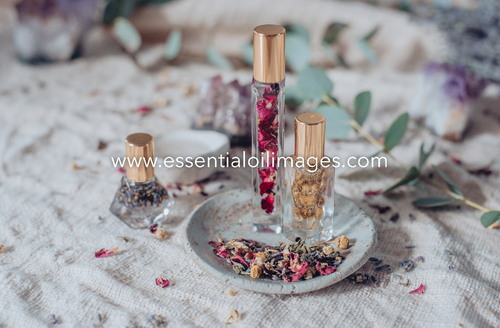 The Natural Essence Perfume Makers Collection