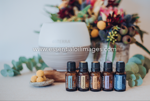 The Floral Abundance - Emotional Wellness Starter Kit Collection