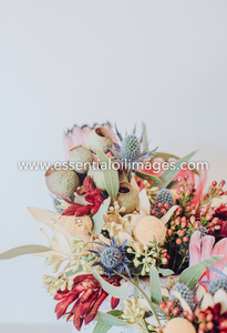 The Floral Abundance - The Flower Collection