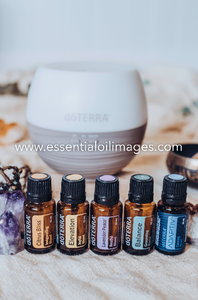 The Earthly Treasure Emotional Wellness Collection