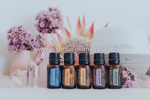 The Rose Quartz and Protea Emotional Wellness Collection
