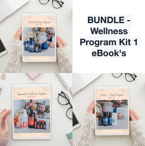BUNDLE - Wellness Program Kit 1 eBook's