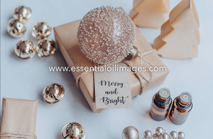 Merry and Bright Christmas Collection - Unbranded
