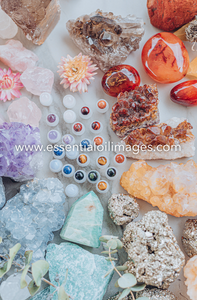 The Introduction to Chakras Collection