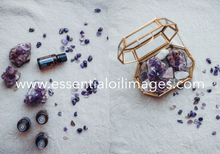 Load image into Gallery viewer, The AU Home Essential Kit Crystal Collection