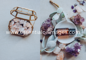 The Slim/Smart and Sassy Crystal Collection