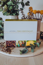 Load image into Gallery viewer, The AUS Family Essentials Kit Ceramic Collection
